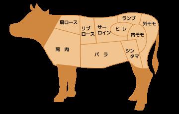 肉の部位のイラスト